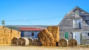 白色有Haybales的被风化的谷仓 免版税图库摄影