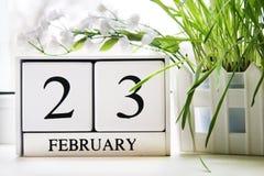 白色木万年历与日期在窗口的2月23日 祖国保卫者日 草 库存图片