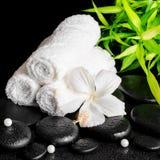白色木槿温泉静物画开花,竹子、毛巾和小珠 免版税库存照片