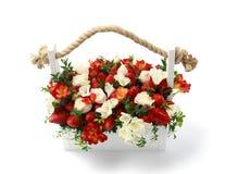 白色木箱充满白色和在白色背景隔绝的英国兰开斯特家族族徽和成熟草莓 免版税图库摄影