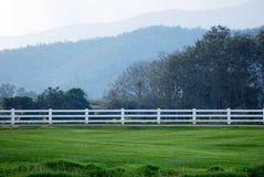 白色木篱芭和绿草庭院 免版税库存照片