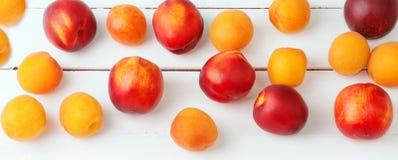 白色木背景用水多的橙色杏子和明亮的新鲜的红色necratins和桃子 库存照片