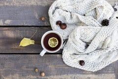 白色杯子用近茶和柠檬、被编织的围巾和坚果,在公园的木背景 免版税图库摄影