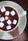 白色杯用热巧克力用蛋白软糖 图库摄影