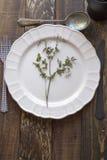 白色板材、刀子和叉子在老木桌上 库存照片