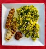 白色板材用烤食物和土豆沙拉在一红色backgrou 图库摄影