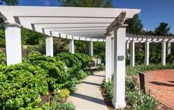 白色树荫处赫尔希庭院宾夕法尼亚 免版税库存照片