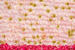 白色桃红色背景花的布置 免版税库存照片