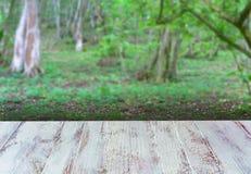 白色桌面有森林背景 库存图片