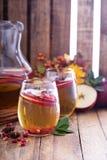 白色桑格里酒用苹果汁 免版税库存图片