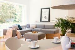 白色椅子在明亮的公寓内部的桌上用灰色玉米 图库摄影