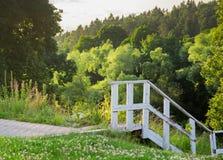 白色楼梯去森林 免版税库存照片