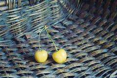 白色樱桃 免版税库存图片