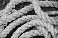 白色水手绳索 免版税库存图片