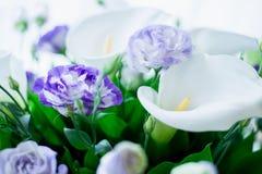 白色水芋属花束  免版税图库摄影
