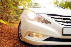 白色汽车和秋天 库存照片