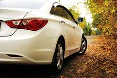 白色汽车和秋天 免版税库存照片