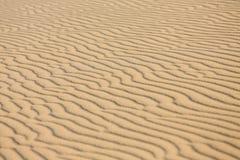 白色沙丘的简单的样式特写镜头与风的仿造对角地 图库摄影