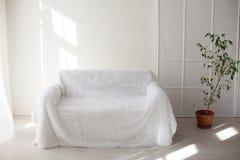白色沙发和绿色室内植物在屋子里 库存照片