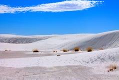 白色沙子国家历史文物风景  免版税库存照片