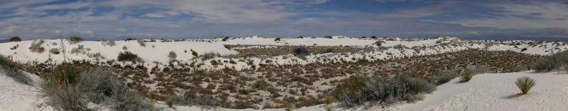白色沙子在新墨西哥 免版税库存图片