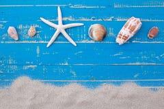 白色沙子星鱼和壳 免版税库存图片