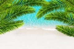 白色沙子海滩和热带海有棕榈树的 免版税库存照片