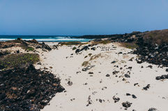 白色沙子海滩在加那利群岛 免版税库存图片