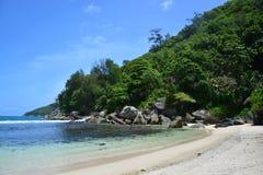 白色沙子热带海滩、豪华的绿色森林和明白蓝天 免版税库存照片