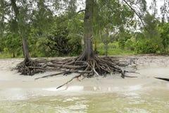 白色沙滩在酸值荣海岛在柬埔寨 免版税库存照片