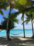 白色沙滩和吊床在棕榈之间 免版税库存照片