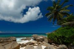 白色沙滩塞舌尔群岛 库存图片