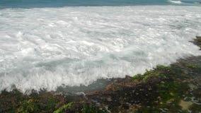 白色海浪洗涤绿色海草和棕色珊瑚礁 股票视频