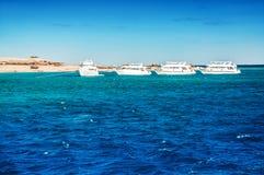 白色游艇在红海 库存图片