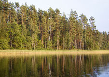 白色湖 免版税库存照片