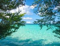 白色热带海滩在有树和蓝色盐水湖的马尔代夫 库存照片
