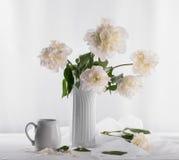 白色牡丹美丽的花束  库存照片