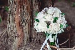 白色牡丹豪华新娘花束在一棵老树的根的 免版税库存图片