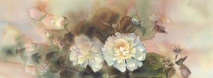 白色牡丹水彩花束  免版税库存照片