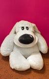 白色狗玩具 库存图片