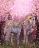 白色独角兽母马和驹 免版税库存图片