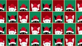 黑白色猫兔子棋盘圣诞节红色绿色背景 股票录像