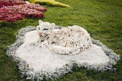 白色猫花雕塑–花展在乌克兰, 2012年 免版税图库摄影