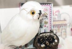 白色猫头鹰,玩具 免版税库存照片