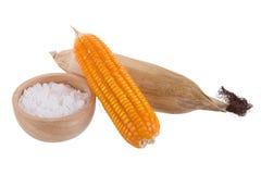 白色玉米粉粉末用于烘烤的一种普遍的食品成分 免版税库存照片
