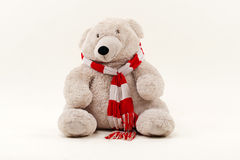 白色玩具熊 免版税库存照片