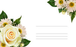 白色玫瑰和翠菊花壁角安排 免版税库存照片