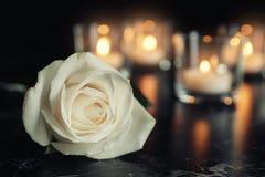 白色玫瑰和被弄脏的灼烧的蜡烛在桌上在黑暗,空间中文本的 免版税库存图片