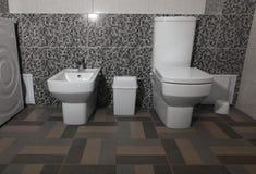 白色现代洗手间和净身盆 库存照片