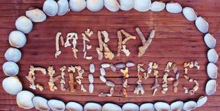 从白色珊瑚和壳的圣诞节题字在木背景 库存照片